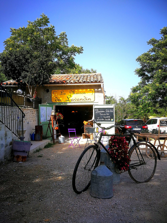 Provenza on the road da est a ovest attraverso il Verdon - fattoria del lavandino